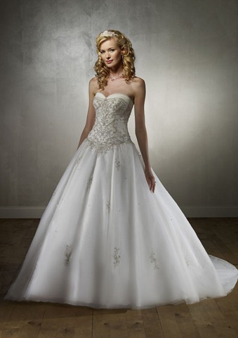 Top 5 Things I am Looking for in a Wedding Dress.
