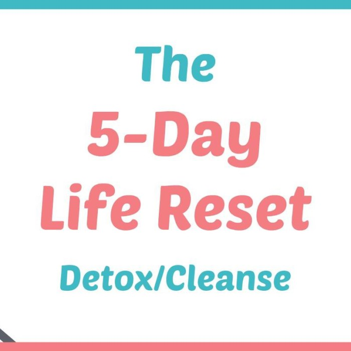 5-Day Life Reset {FREE Workshop}